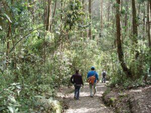 Cerro del tanque Bogotá