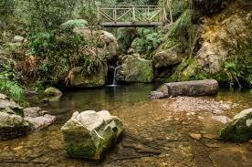 Caminatas ecológicas por Bogotá