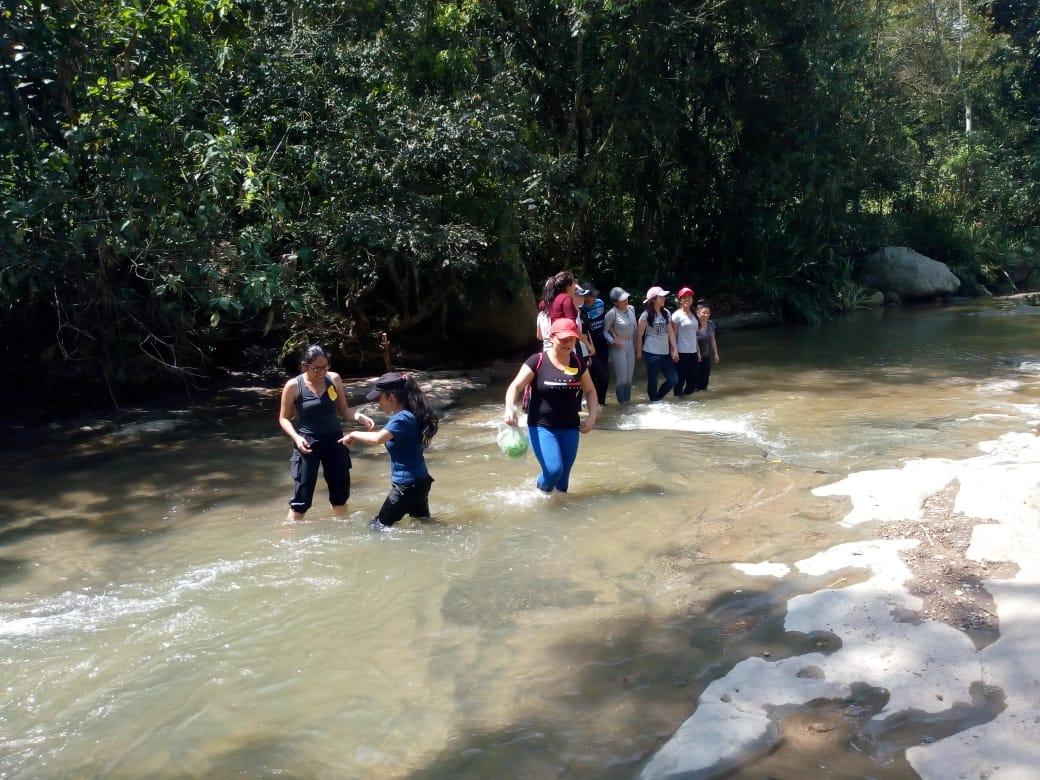 Caminatas ecológicas en Cundinamarca Árbol de ventanas