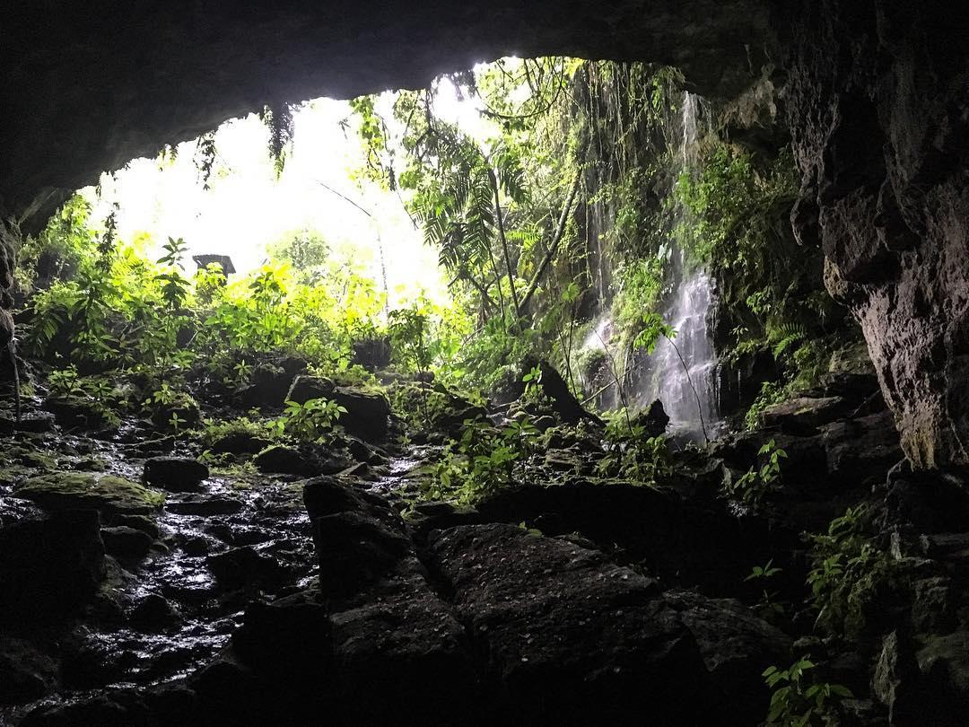 Cueva de los Guácharos