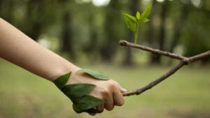 Beneficios espirituales de las caminatas