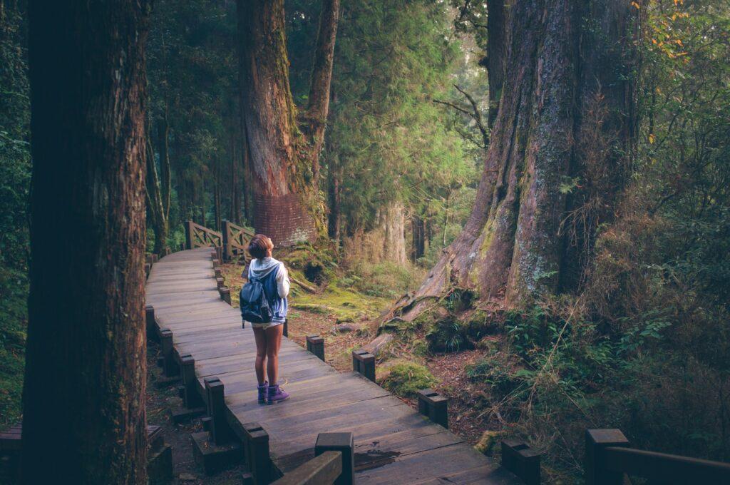 Beneficios mentales de las caminatas ecológicas