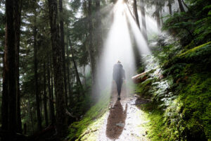 beneficios de las caminatas ecológicas