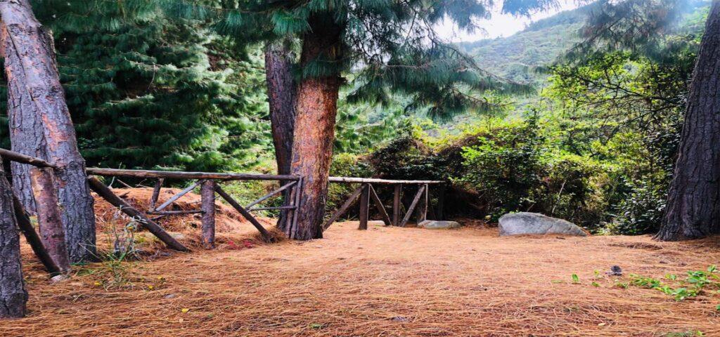 Caminata Quebrada la vieja