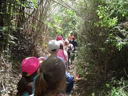 Caminatas ecológicas