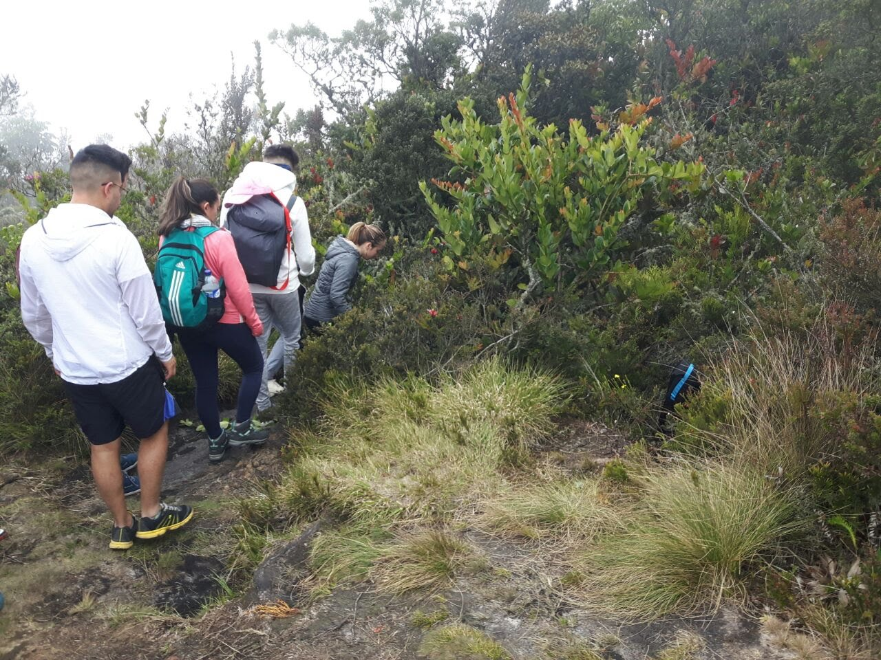 Caminata Subachoque