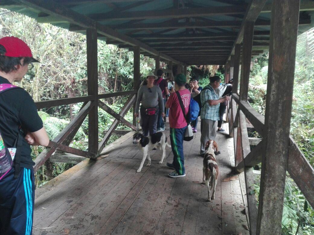 Caminata Aguadita