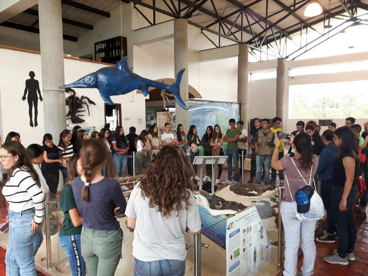 Tour museo paleoontológico