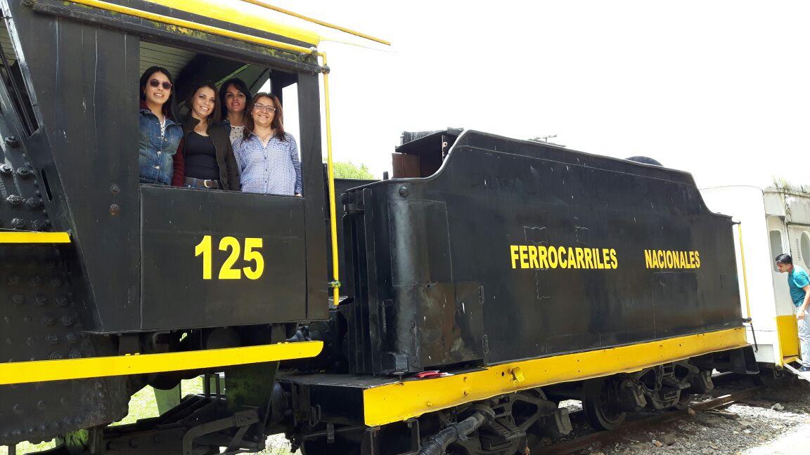 Tren de la sabana