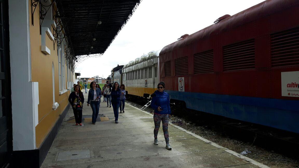 Recorrido tren de la sabana