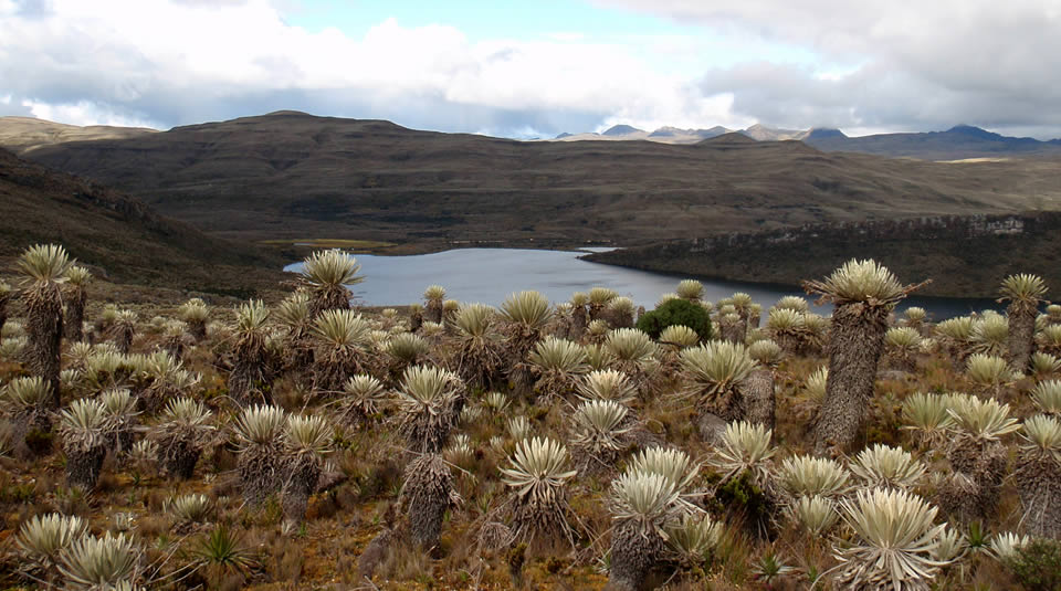Caminatas Bogotá Sumapaz